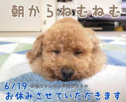 臨時休業のお知らせ(6月19日)